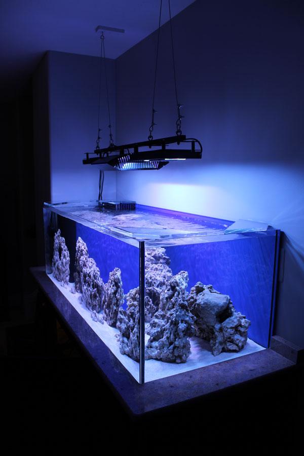 Ecotech Marine Introduces The Radion Xr30w Led Light